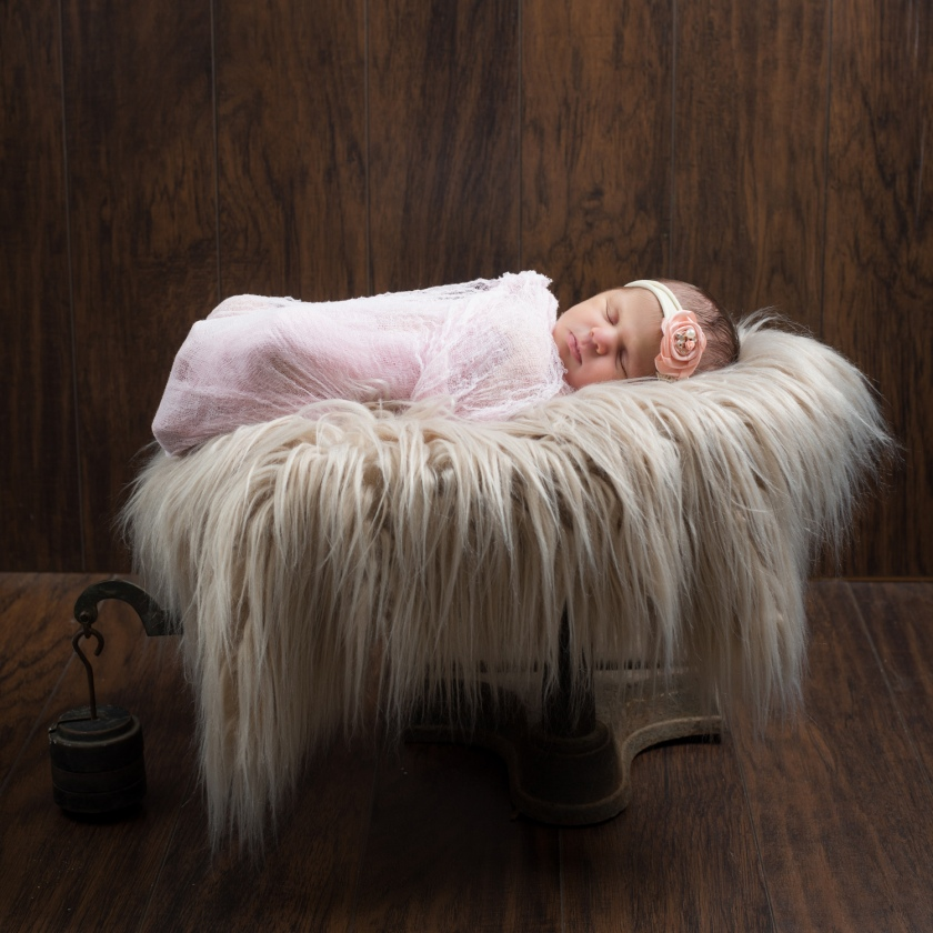 Newborn baby girl wrapped in pink swaddle sleeps in fur-lined cradle.